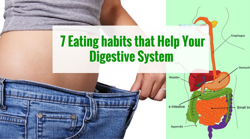 Steps To Get Food From Mouth To Stomach