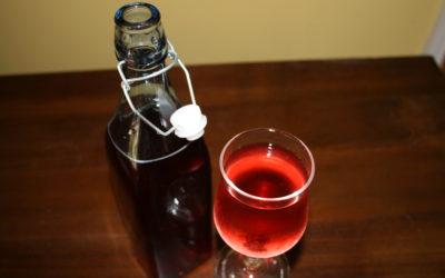 Tasty Fermented Apple Cider Vinegar Drink