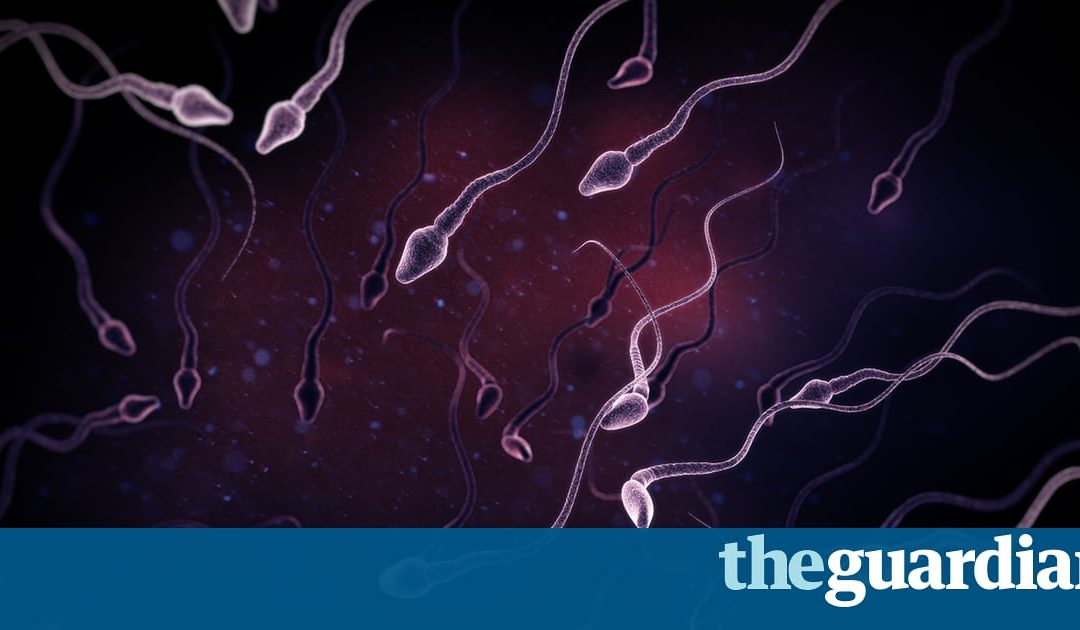 Sperm Counts Among Western Men Have Halved In Last 40 Years!