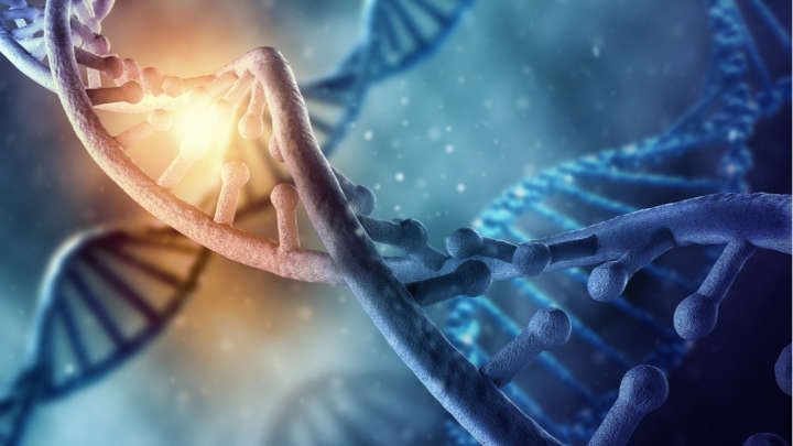 Scientists Have Edited The Genetic Code Directly Inside An Adult Human's Body For The First Time
