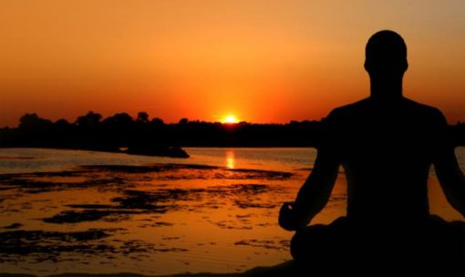 Stress management and the immune system health (2)