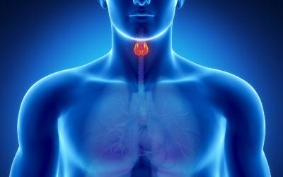 causes of Hashimoto's Disease or Hashimoto's Thyroiditis