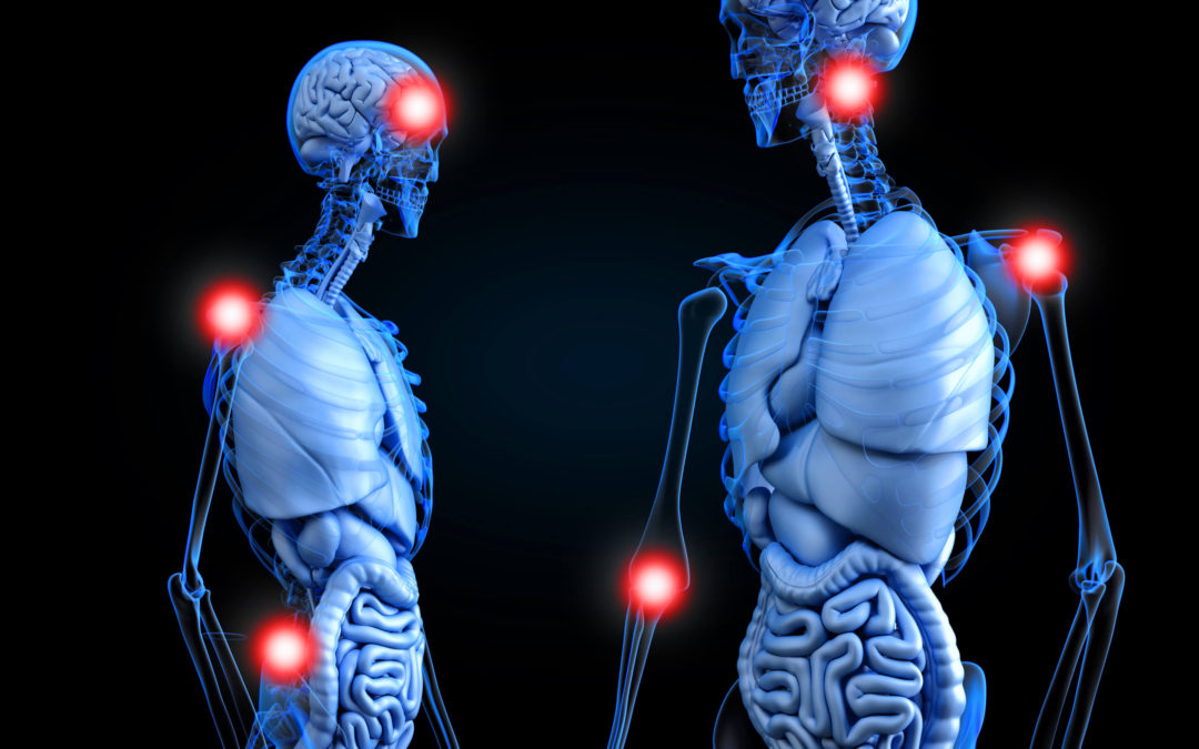 How are immune system dysfunctions linked to the causes of Fibromyalgia?